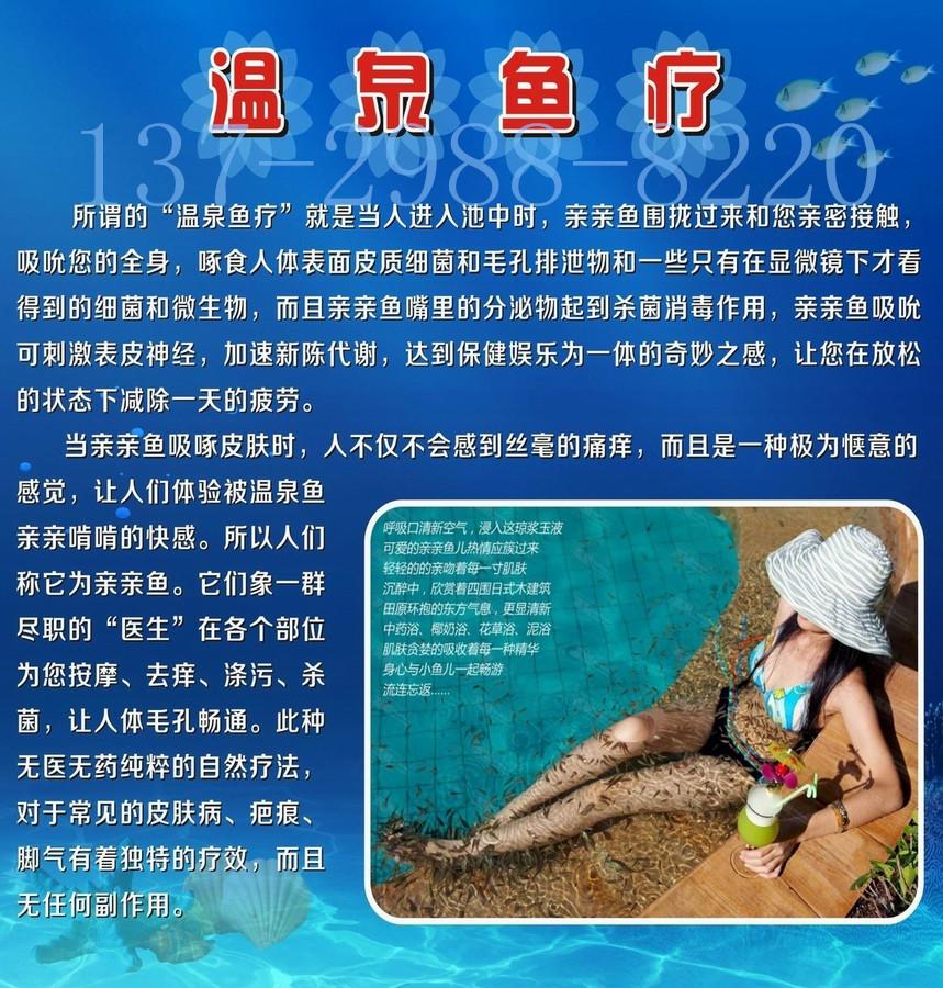 可以提供鱼缸设计图,水循环系统设计图,增氧恒温设置购买咨询